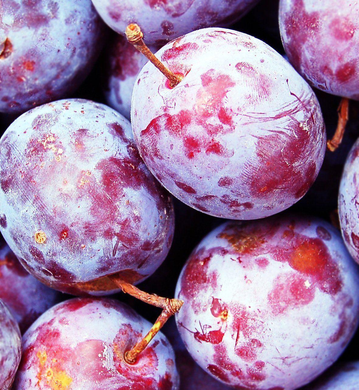 prune-avantaje-medicinale