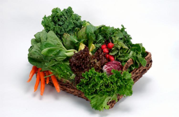 legume-cu-frunze-verzi