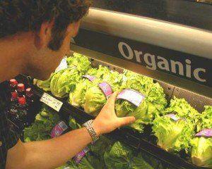 mancare organica
