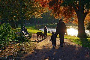 o plimbare in parc