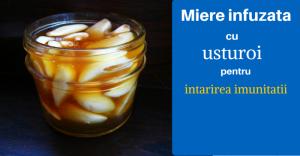 miere infuzata cu usturoi pentru intarirea imunitatii