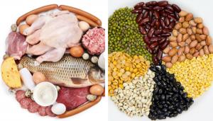 proteina animala vs proteina vegetala