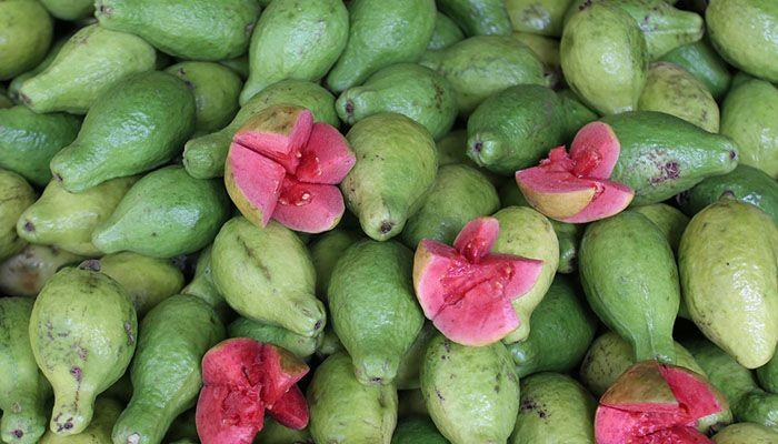 guava pleacă de slăbire